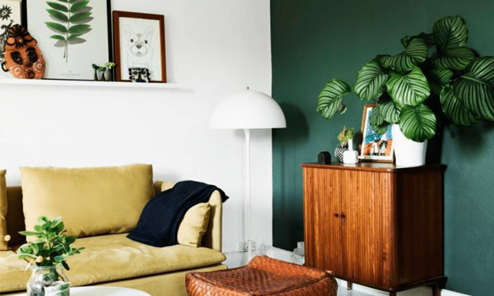 Decoração de interiores com Plantas
